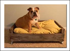 Кровати и лежаки