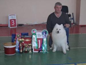 мама- Афина Голд (чемпион России и РКФ)
