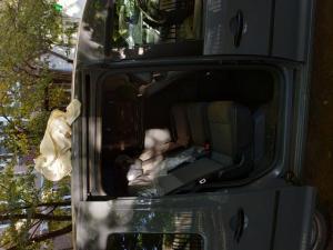 Перевозка домашних животных по Москве и М.О