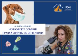 Бесплатная онлайн-лекция ветеринарного врача Веры Александровой для владельцев собак