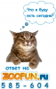 Аватар пользователя Antony