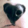Аватар пользователя Maria_M